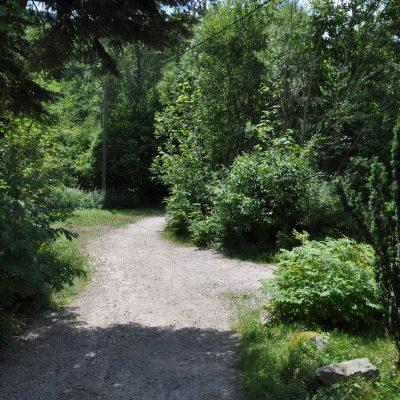 Zugangsweg